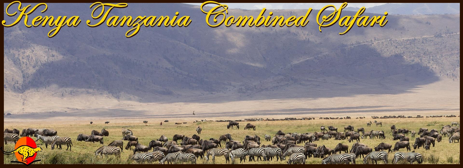 Kenya Tanzania Safari Ngorongoro Crater Safari Holidays